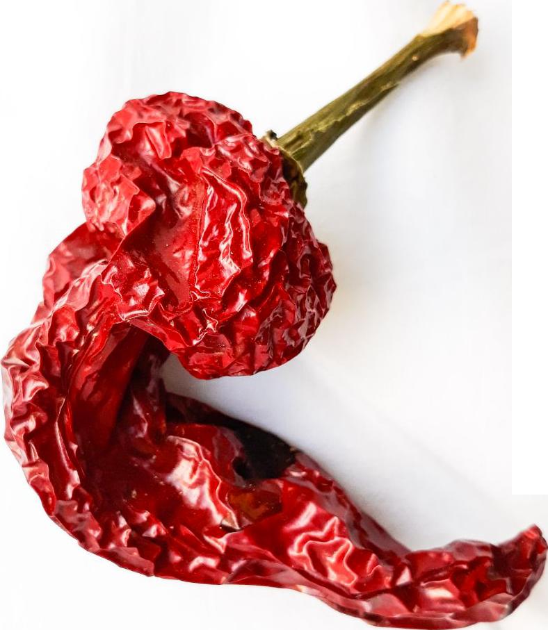 peperone-crusco-mab-masseria-agricola-buongiorno-azienda-produzione-peperoni-cruschi-senise-igp-basilicata
